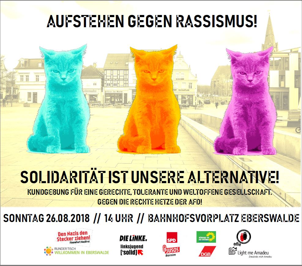 """Als bekannt wurde, dass die AfD, gemeinsam mit weiteren, fremdenfeindlichen Organisationen, eine Kundgebung mit Demonstration in Eberswalde angemeldet hat, versammelte sich ein breites, buntes Toleranzbündnis, um entsprechenden Protest zu organisieren. Federführend in der Vorbereitung, Organisation und Anmeldung war der Deutsche Gewerkschaftsbund - Region Ostbrandenburg und Kreisverband Barnim. """"Wir werden es nicht zulassen, dass sich diese rassistische und menschenverachtende Gruppierung ohne Protest in unserer Stadt aufhalten und ihre Propaganda verbreiten wird."""", sagt Sebastian Walter DGB-Regionsgeschäftsführer in Ostbrandenburg. """"Wir wollen diese Menschen nicht, die offensichtlich aus der Geschichte nichts gelernt haben! Wir wollen sie nicht in dieser Stadt, in dieser Region, nicht in diesem Land!"""", fügt Walter an. Neben dem DGB und den Mitgliedsgewerkschaften versammelten sich sehr viele junge Menschen – Studentinnen und Studenten dieser Stadt sowie Vertreterinnen und Vertreter der regionalen, kommunalen und landesweiten Politik. Unter anderem sprach Margitta Mächtig, Mitglied der Fraktion DIE LINKE im Brandenburger Landtag zu den friedlichen Teilnehmer/Innen der Gegendemo. Britta Müller, ebenfalls Mitglied des Brandenburger Landtages der SPD-Fraktion, nahm auch das Mikrofon zur Hand und brachte ihre Wut über diese AfD-Kundgebung und deren Inhalten zum Ausdruck. Letztlich haben beide Frauen leider zu oft die Gelegenheit, den AfD-Abgeordneten im Landtag zuhören zu müssen. Mit etwa 400 Teilnehmer/Innen der Gegendemo lag die Anhängerschaft der AfD-Kundgebung mit 200 deutlich darunter. """"Bereits jetzt ist schon bekannt, dass am 3. November 2018 die nächste AfD-Aktion in Eberswalde angemeldet ist."""", äußert sich Sebastian Walter sichtlich genervt. """"Aber wir werden uns nicht davon einschüchtern, sondern noch besser und zahlreicher entsprechende Gegenmaßnahmen organisieren."""", lässt der DGB-Regionsgeschäftsführer ausblicken."""